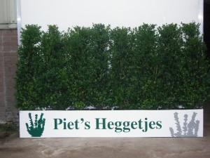 Piet's Heggetjes van 20 t/m 120 cm hoogte