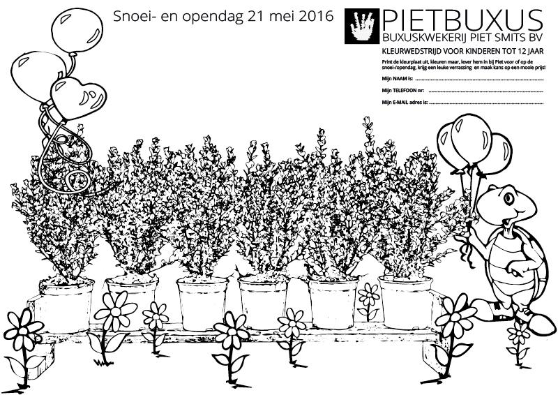 kleurplaat-pietbuxus-snoeidag